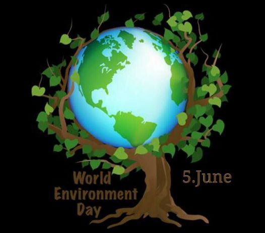 essay on world environment World environment day (wed) world environment day (wed) was established by the un general assembly in 1972 to mark the opening of the stockholm conference on the.